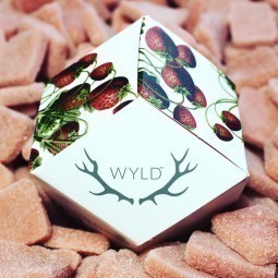 Strawberry CBD Gummies (Wyld)