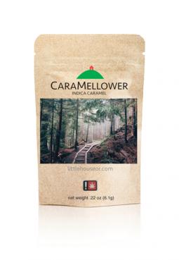 CaraMellower - Caramel