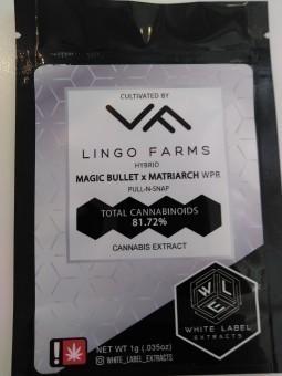 Magic Bullet & Matriarch WPR
