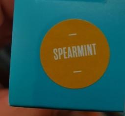 Select CBD Focus Spearmint disposable pen