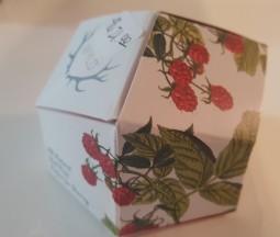 Wyld - Raspberry Gummies - 10 pieces