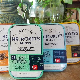 Relaxing Ginger CBD by Moxey's Mints
