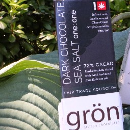 Dark Chocolate Sea Salt 1:1 by Gron Chocolate