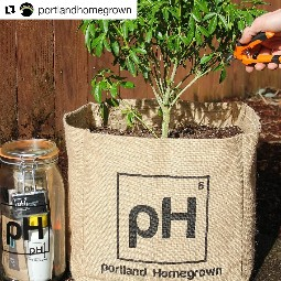 Portland Homegrown Marijuana Grow Kit